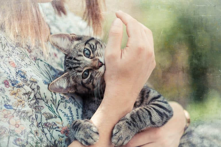 Picture of a woman who holds a kitten in the arms