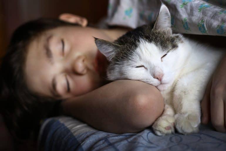 teen boy sleep with cat
